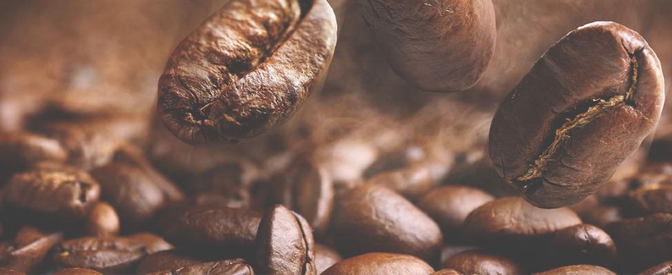 Какао, кофе, чай и фундук, сертифицированные Rainforest Alliance